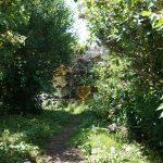Trap Trail